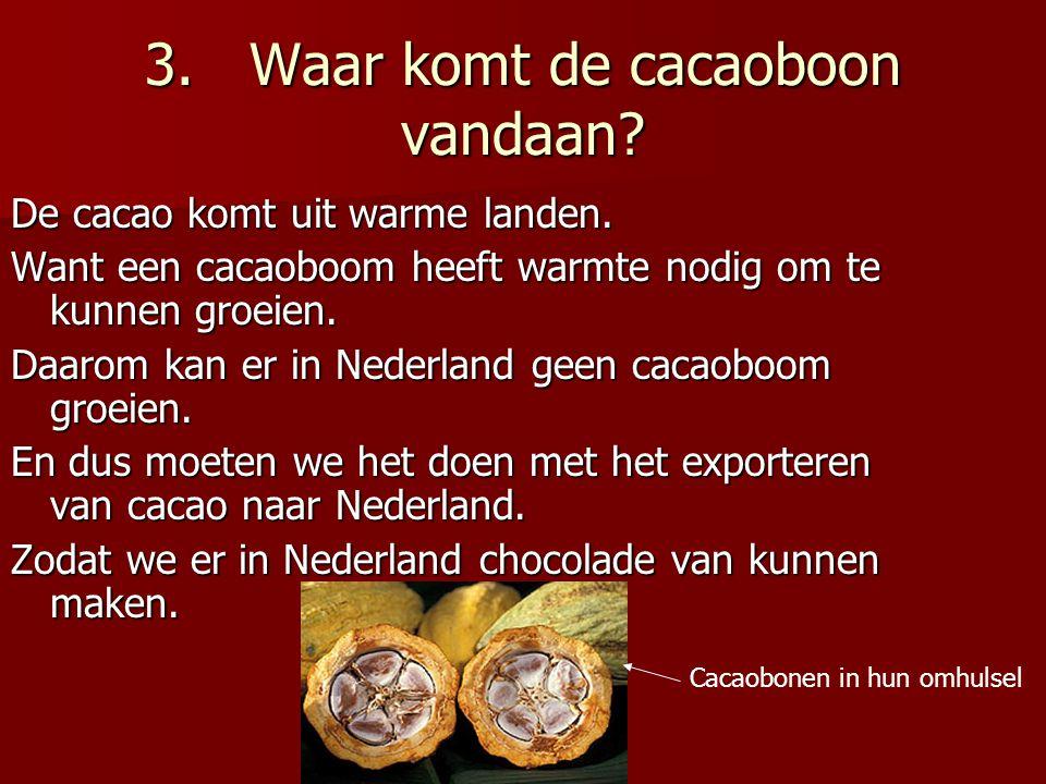 3.Waar komt de cacaoboon vandaan.De cacao komt uit warme landen.