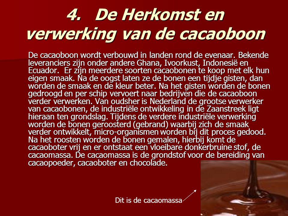 4.De Herkomst en verwerking van de cacaoboon De cacaoboon wordt verbouwd in landen rond de evenaar.