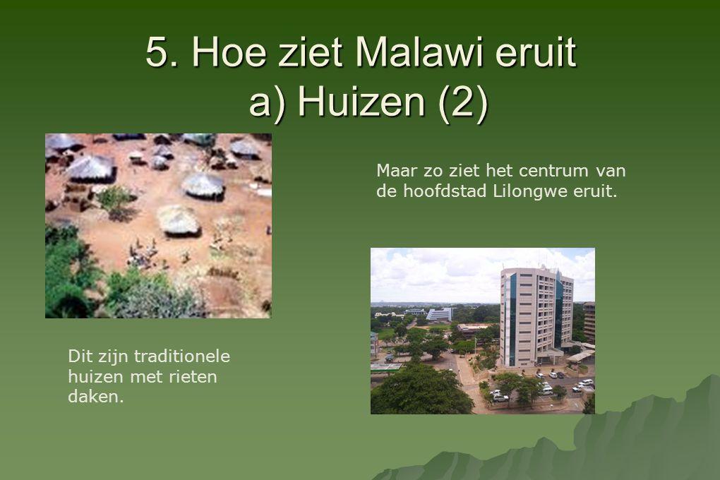 5. Hoe ziet Malawi eruit a) Huizen (2) Dit zijn traditionele huizen met rieten daken. Maar zo ziet het centrum van de hoofdstad Lilongwe eruit.