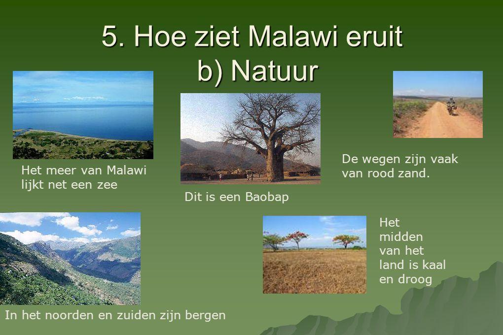 5. Hoe ziet Malawi eruit b) Natuur Het meer van Malawi lijkt net een zee In het noorden en zuiden zijn bergen Het midden van het land is kaal en droog