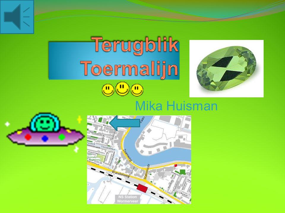 Mika Huisman