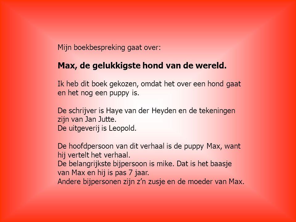 Ik wil nu iets vertellen over de schrijver Haye van der Heyden.