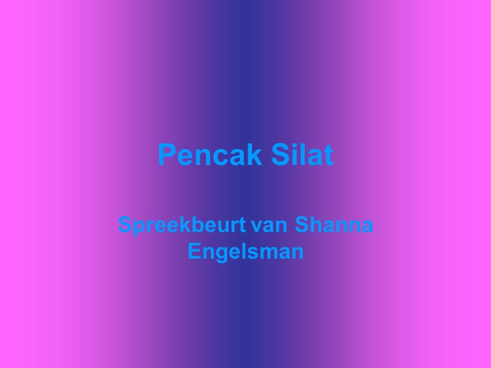 Pencak Silat Spreekbeurt van Shanna Engelsman