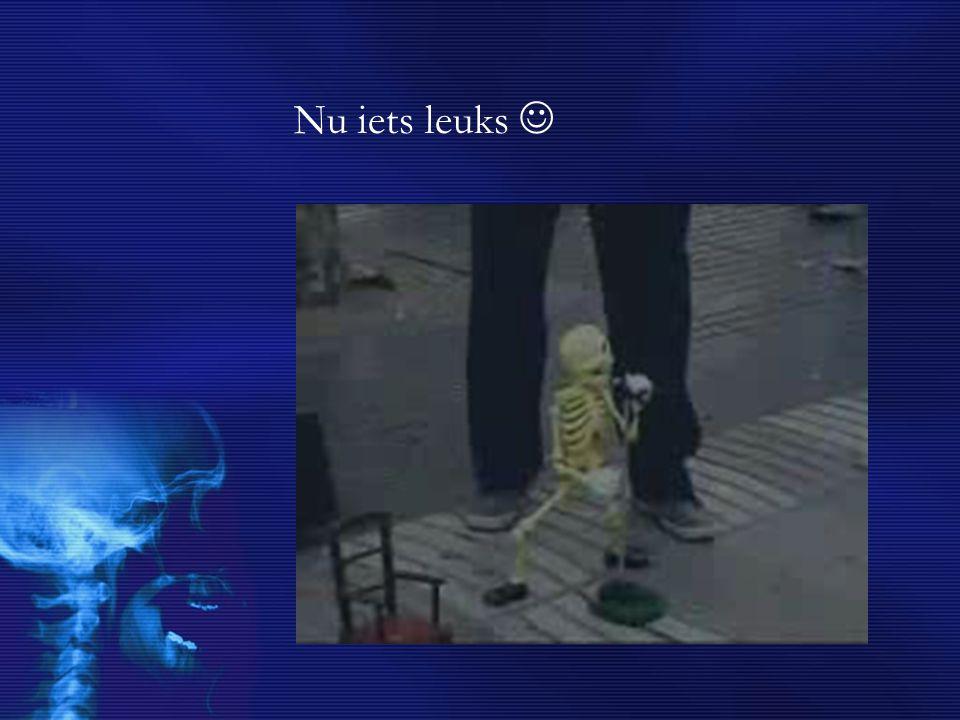 Vragen voor jullie Uit hoe veel botten bestaat het skelet.
