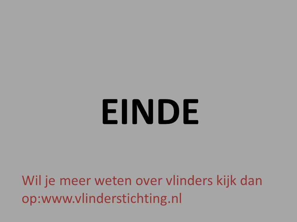 EINDE Wil je meer weten over vlinders kijk dan op:www.vlinderstichting.nl