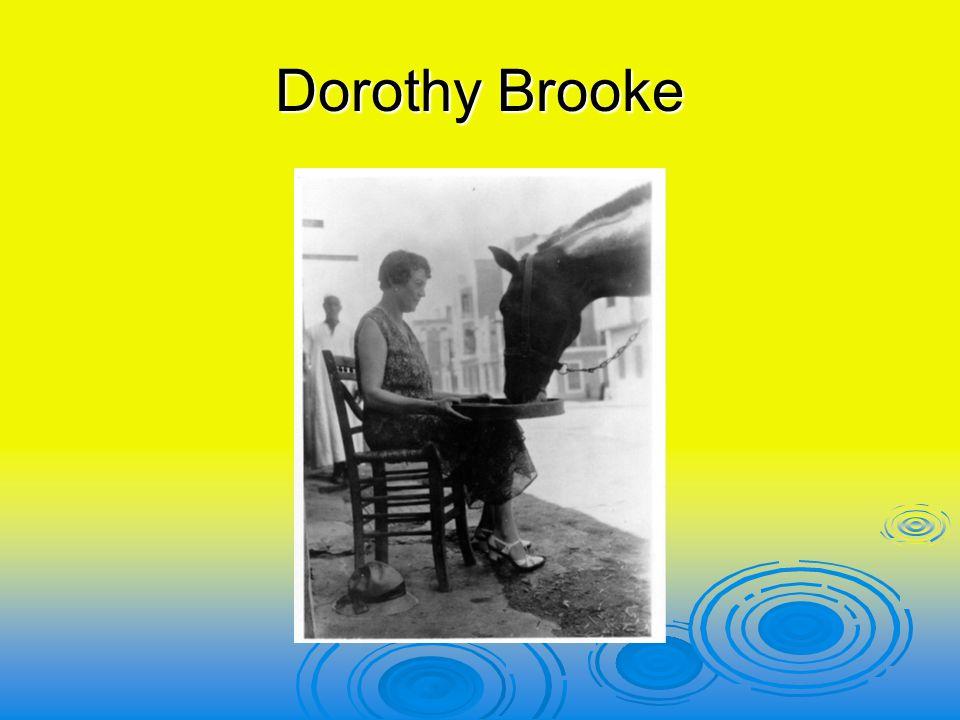 Hoe is het begonnen  Na de eerste wereldoorlog in 1918 bleven de engelse paarden in egypte  Mevrouw Brooke zocht ze 15 jaar later op.