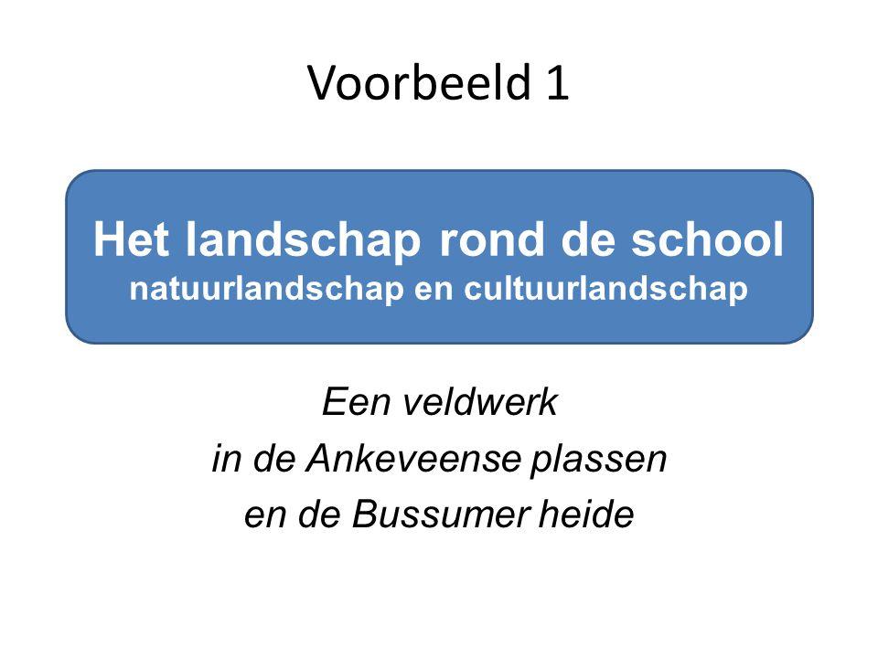 Het landschap rond de school natuurlandschap en cultuurlandschap Een veldwerk in de Ankeveense plassen en de Bussumer heide Voorbeeld 1