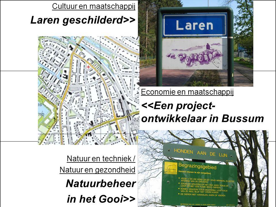Cultuur en maatschappij Laren geschilderd>> Economie en maatschappij <<Een project- ontwikkelaar in Bussum Natuur en techniek / Natuur en gezondheid N