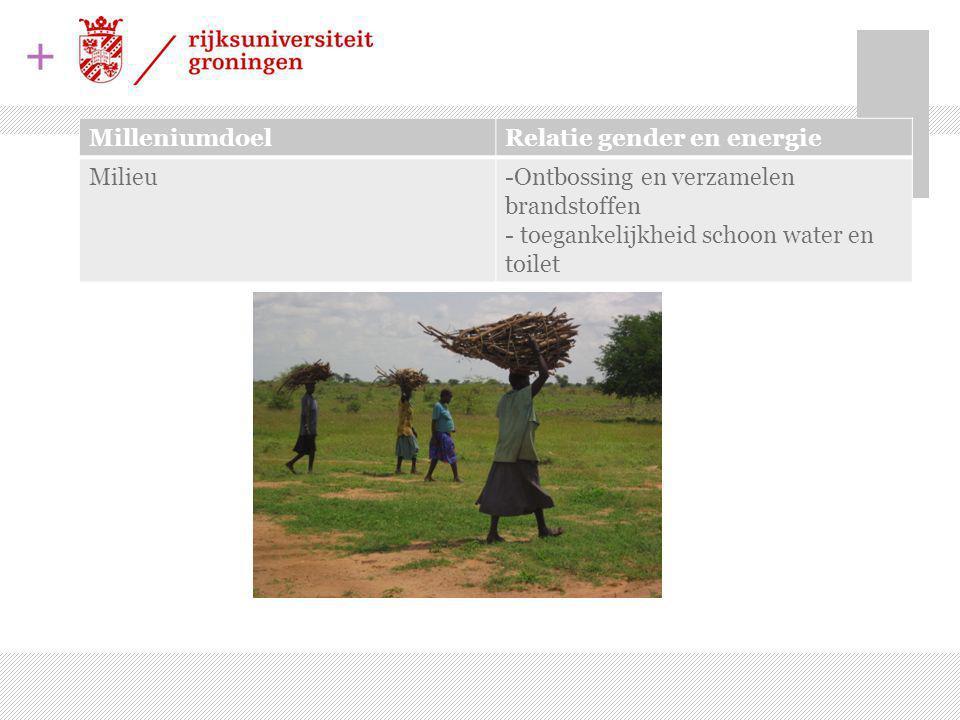 + MilleniumdoelRelatie gender en energie Milieu-Ontbossing en verzamelen brandstoffen - toegankelijkheid schoon water en toilet