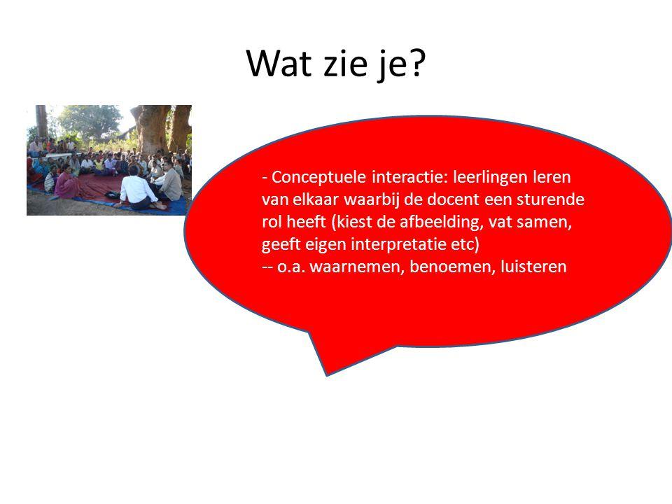 Wat zie je? - Conceptuele interactie: leerlingen leren van elkaar waarbij de docent een sturende rol heeft (kiest de afbeelding, vat samen, geeft eige