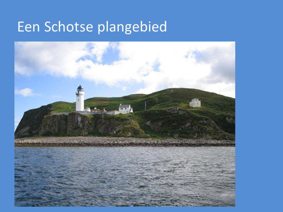 Een Schotse plangebied