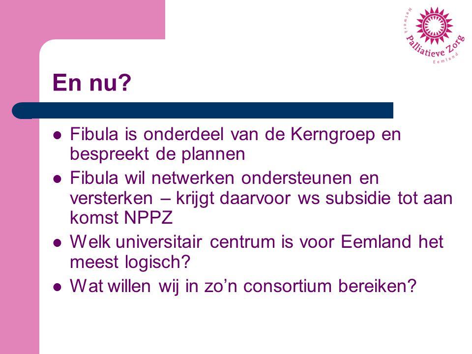 En nu? Fibula is onderdeel van de Kerngroep en bespreekt de plannen Fibula wil netwerken ondersteunen en versterken – krijgt daarvoor ws subsidie tot