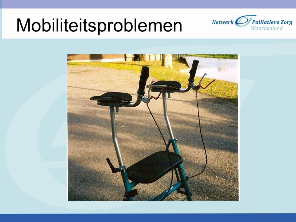 Mobiliteitsproblemen