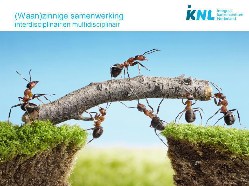 (Waan)zinnige samenwerking interdisciplinair en multidisciplinair