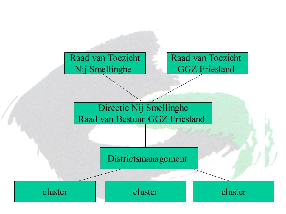 cluster Raad van Toezicht Nij Smellinghe Directie Nij Smellinghe Raad van Bestuur GGZ Friesland Districtsmanagement cluster Raad van Toezicht GGZ Frie