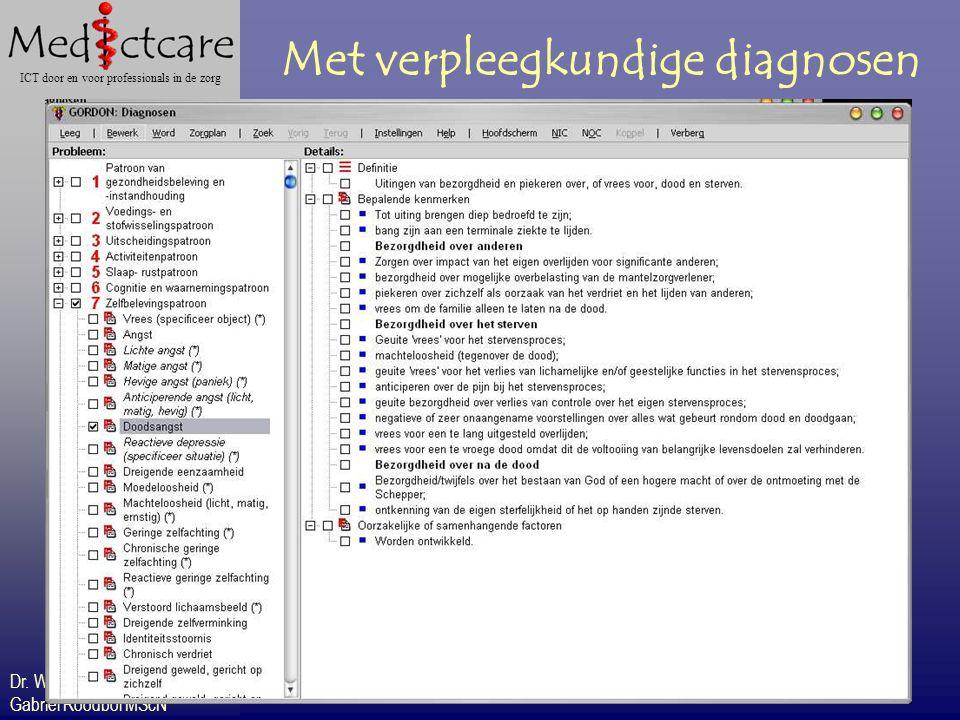 Dr. Wietse Dol Gabriël Roodbol MScN ICT door en voor professionals in de zorg Met verpleegkundige diagnosen