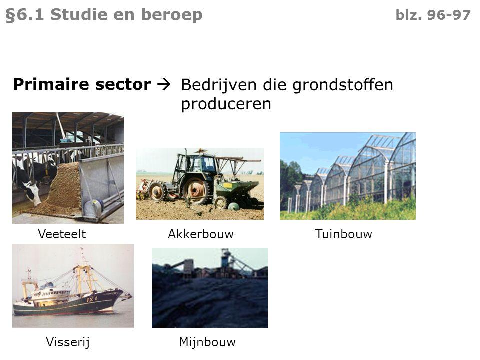 Bedrijven die grondstoffen produceren Veeteelt Akkerbouw Tuinbouw Visserij Mijnbouw Primaire sector  §6.1 Studie en beroep blz. 96-97