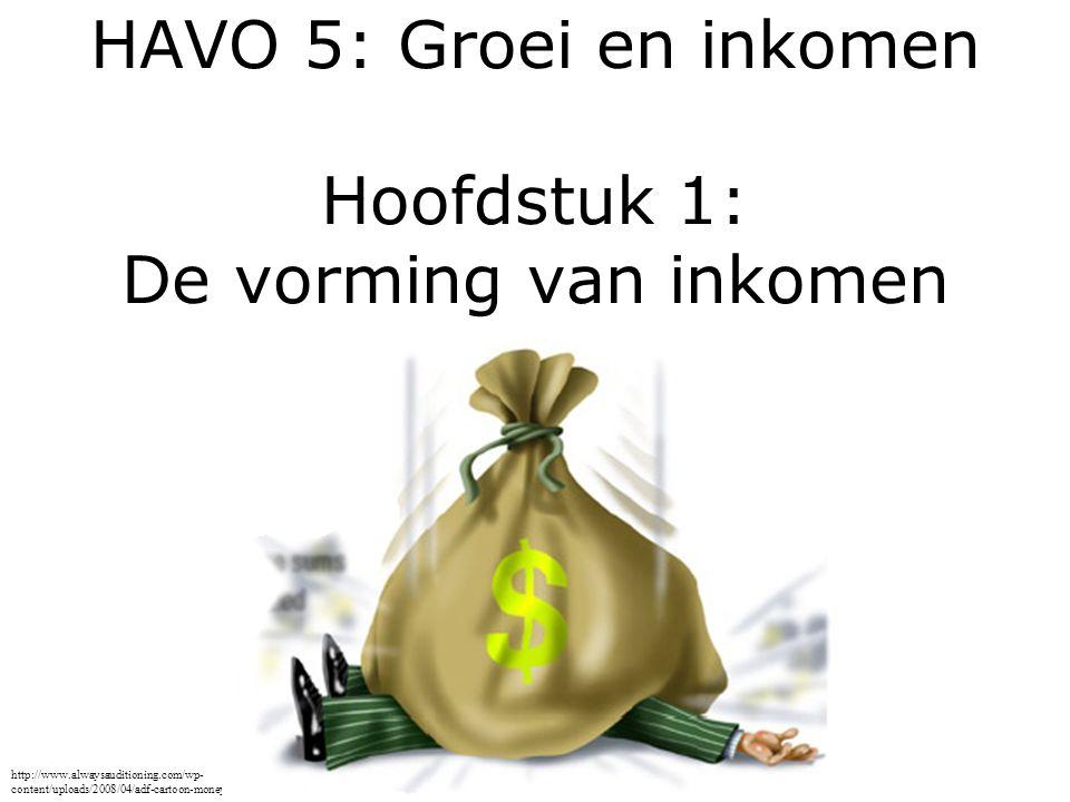 HAVO 5: Groei en inkomen Hoofdstuk 1: De vorming van inkomen http://www.alwaysauditioning.com/wp- content/uploads/2008/04/adf-cartoon-money-bag1.jpg