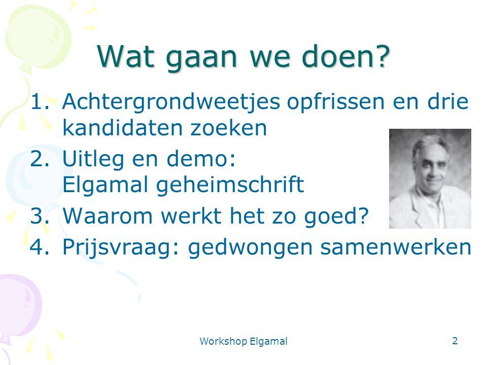 Workshop Elgamal 3 Wat gaan we doen.