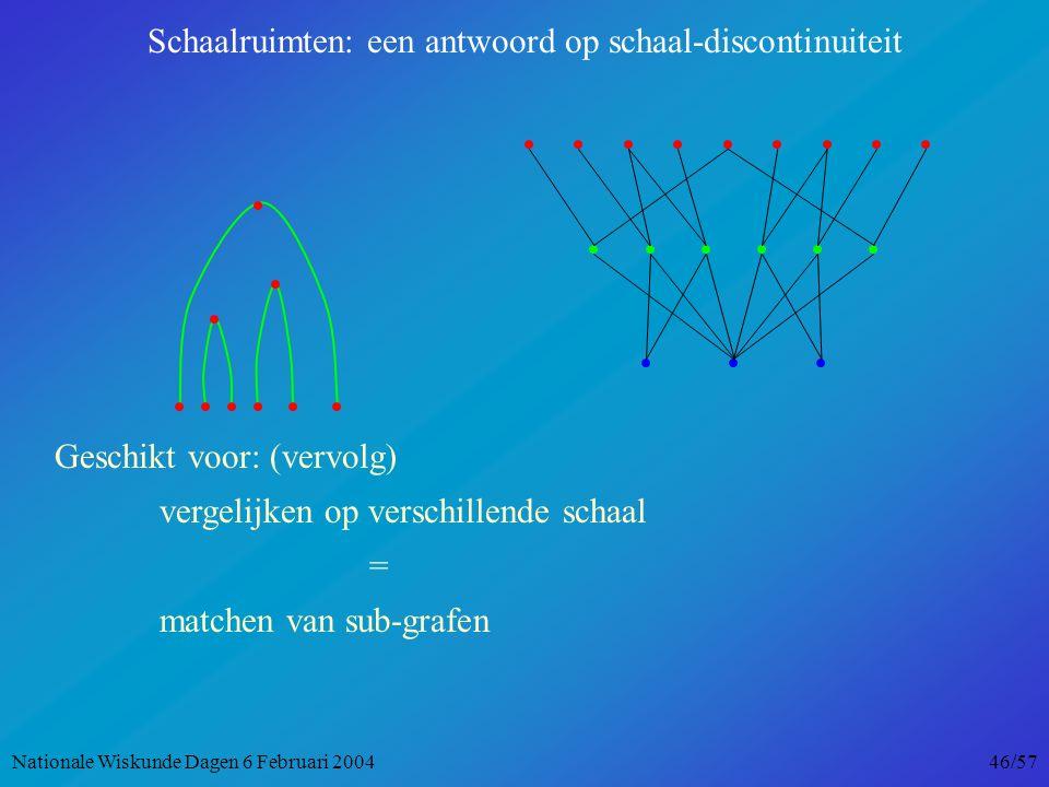 Geschikt voor: (vervolg) vergelijken op verschillende schaal = matchen van sub-grafen Schaalruimten: een antwoord op schaal-discontinuiteit Nationale Wiskunde Dagen 6 Februari 2004 46/57