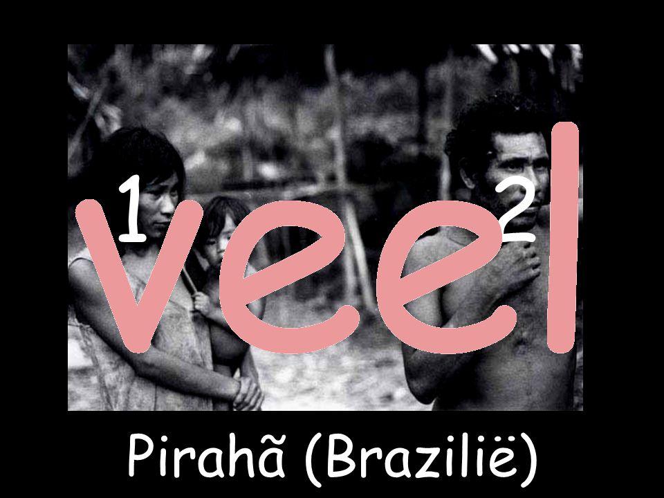 Pirahã (Brazilië) 21