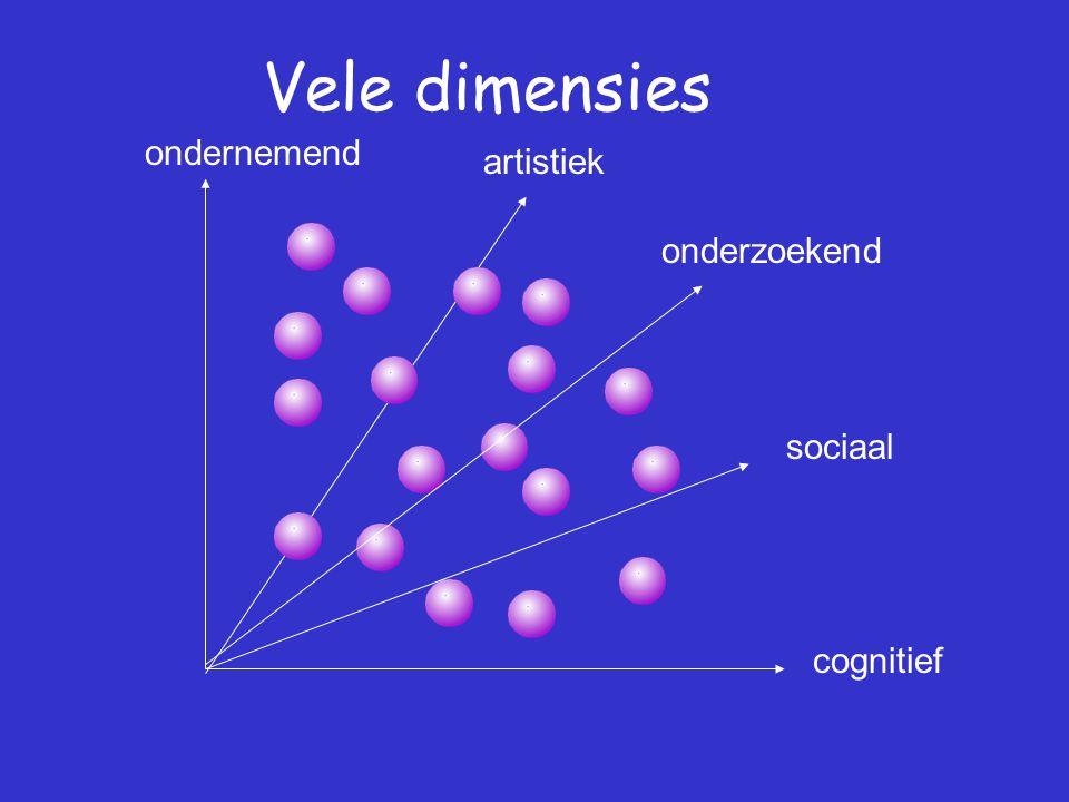 Vele dimensies onderzoekend ondernemend sociaal cognitief artistiek