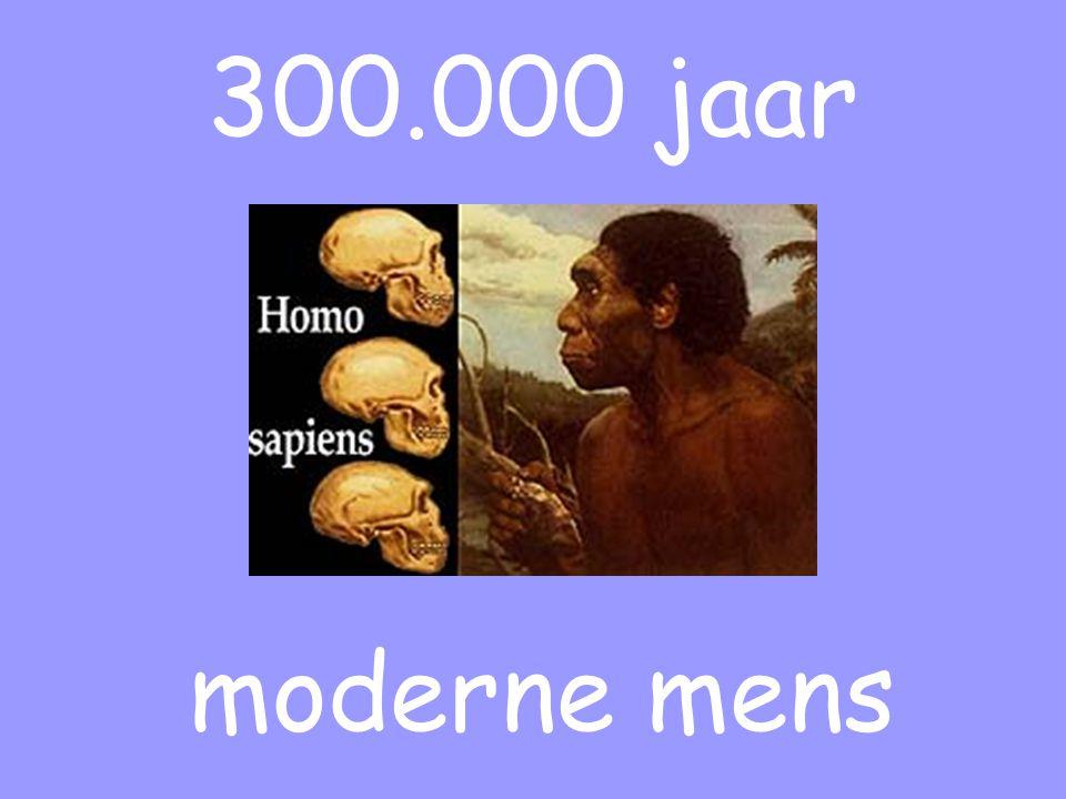 300.000 jaar moderne mens