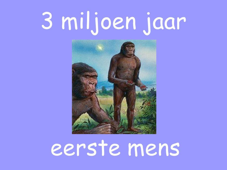 3 miljoen jaar eerste mens