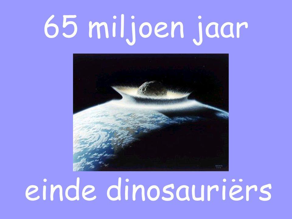65 miljoen jaar einde dinosauriërs