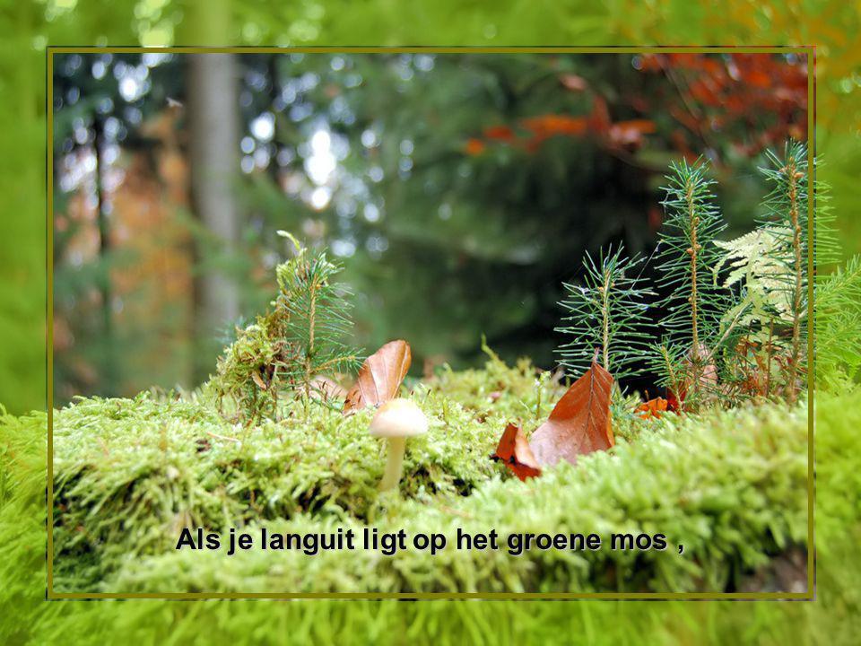 Als je languit ligt op het groene mos,