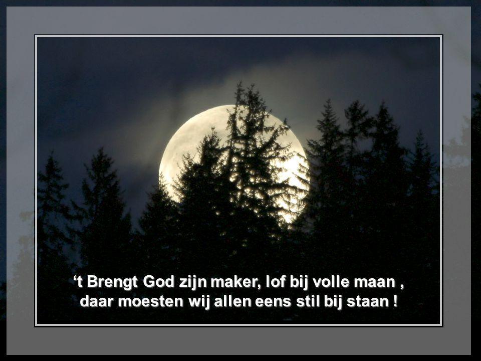 't Brengt God zijn maker, lof bij volle maan, daar moesten wij allen eens stil bij staan !