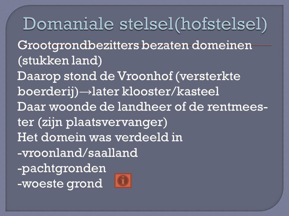Grootgrondbezitters bezaten domeinen (stukken land) Daarop stond de Vroonhof (versterkte boerderij) → later klooster/kasteel Daar woonde de landheer o