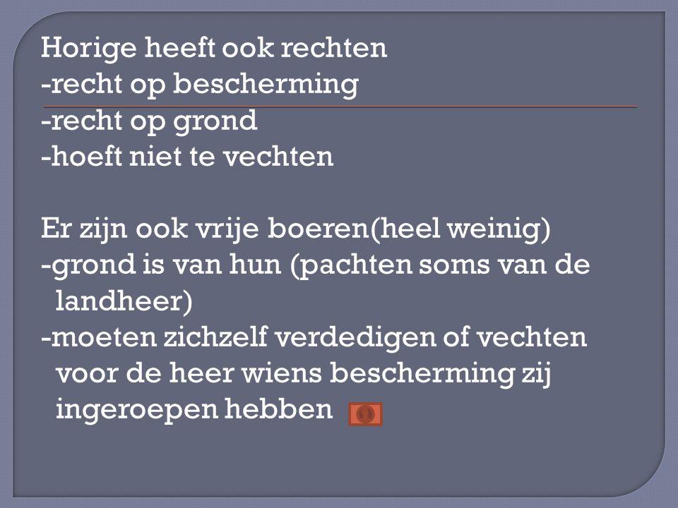 Horige heeft ook rechten -recht op bescherming -recht op grond -hoeft niet te vechten Er zijn ook vrije boeren(heel weinig) -grond is van hun (pachten
