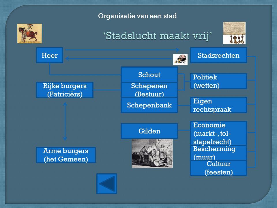 'Stadslucht maakt vrij' Organisatie van een stad Rijke burgers (Patriciërs) Arme burgers (het Gemeen) Gilden Schepenen (Bestuur) Heer Schepenbank Poli
