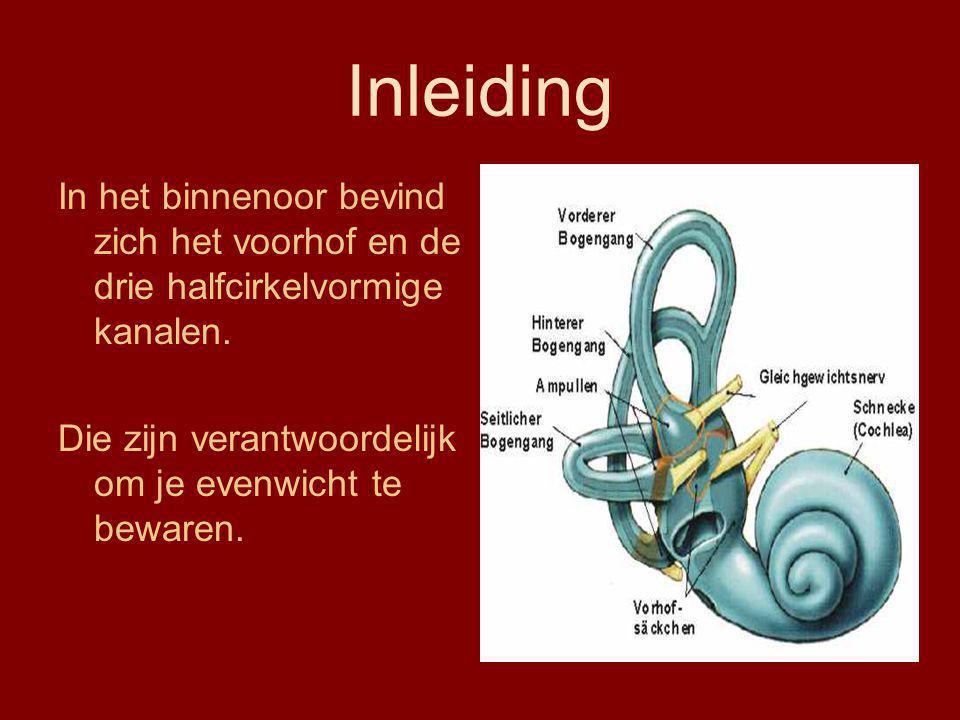 Inleiding In het binnenoor bevind zich het voorhof en de drie halfcirkelvormige kanalen. Die zijn verantwoordelijk om je evenwicht te bewaren.
