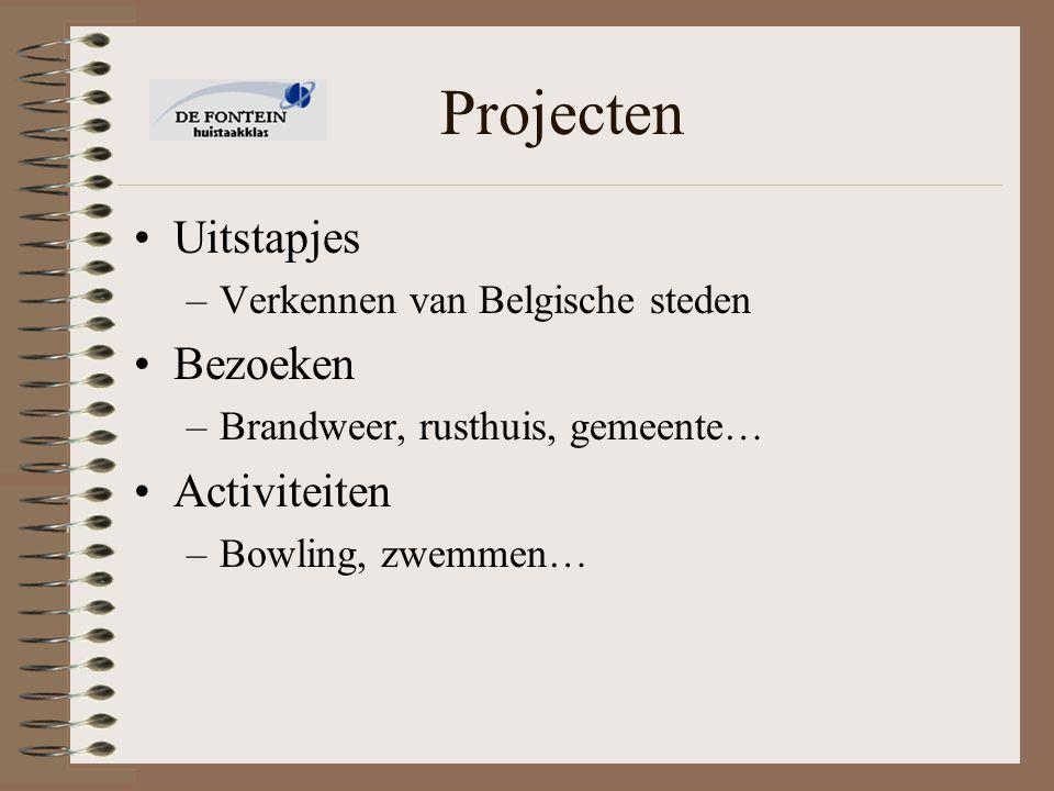 Projecten Uitstapjes –Verkennen van Belgische steden Bezoeken –Brandweer, rusthuis, gemeente… Activiteiten –Bowling, zwemmen…