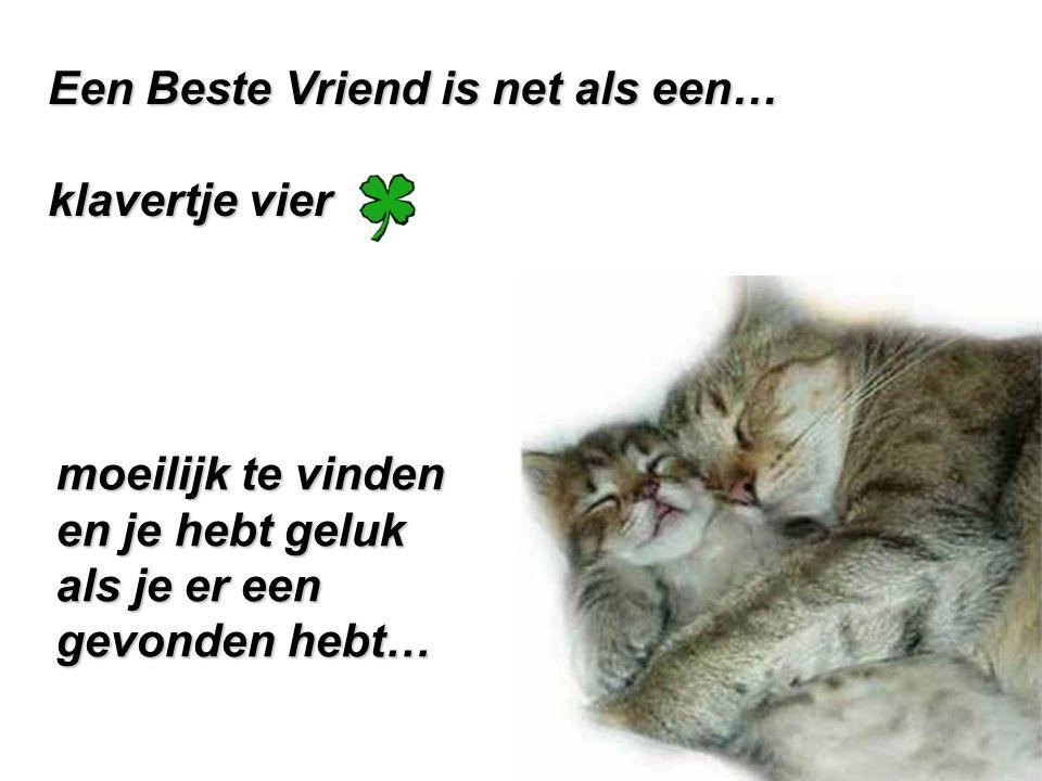 Een Beste Vriend is net als een… klavertje vier moeilijk te vinden en je hebt geluk als je er een gevonden hebt…