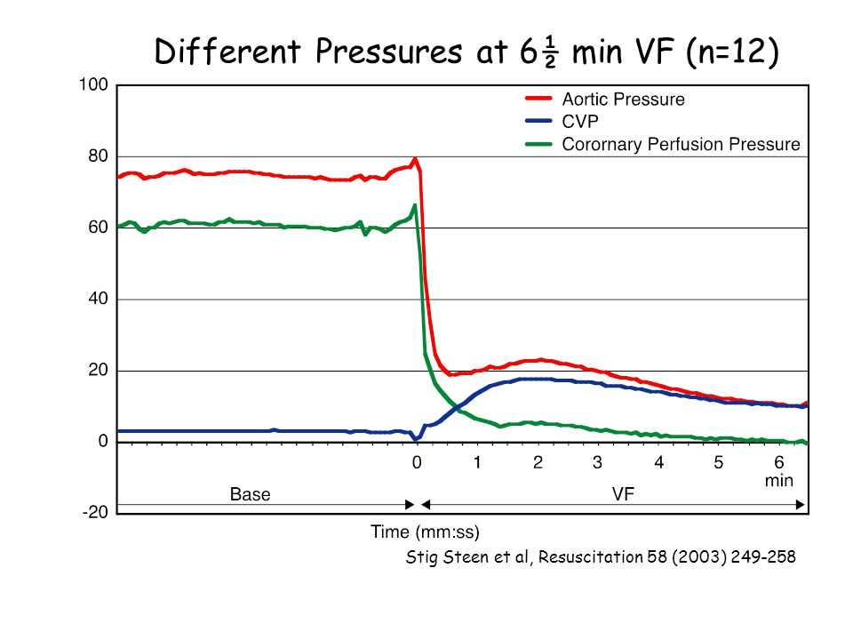 Stig Steen et al, Resuscitation 58 (2003) 249-258 Different Pressures at 6½ min VF (n=12)