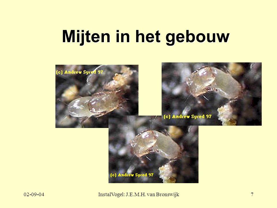 02-09-04InstalVogel: J.E.M.H. van Bronswijk7 Mijten in het gebouw