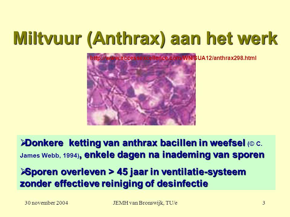 30 november 2004JEMH van Bronswijk, TU/e3 Miltvuur (Anthrax) aan het werk  Donkere ketting van anthrax bacillen in weefsel, enkele dagen na inademing