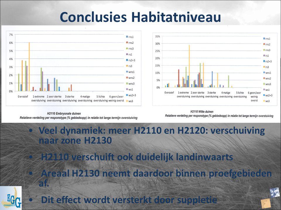 Conclusies Habitatniveau Veel dynamiek: meer H2110 en H2120: verschuiving naar zone H2130 H2110 verschuift ook duidelijk landinwaarts Areaal H2130 nee