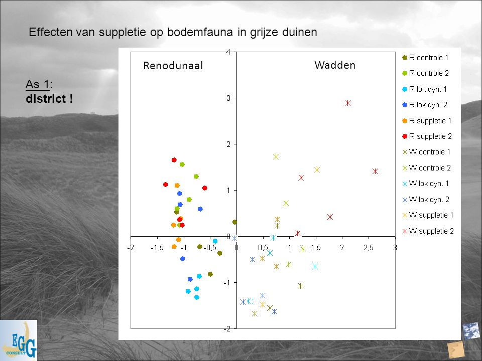 Effecten van suppletie op bodemfauna in grijze duinen Renodunaal Wadden As 1: district !