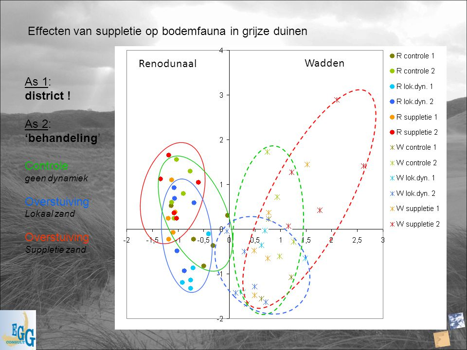 Effecten van suppletie op bodemfauna in grijze duinen Renodunaal Wadden As 1: district ! As 2: 'behandeling' Controle geen dynamiek Overstuiving Lokaa