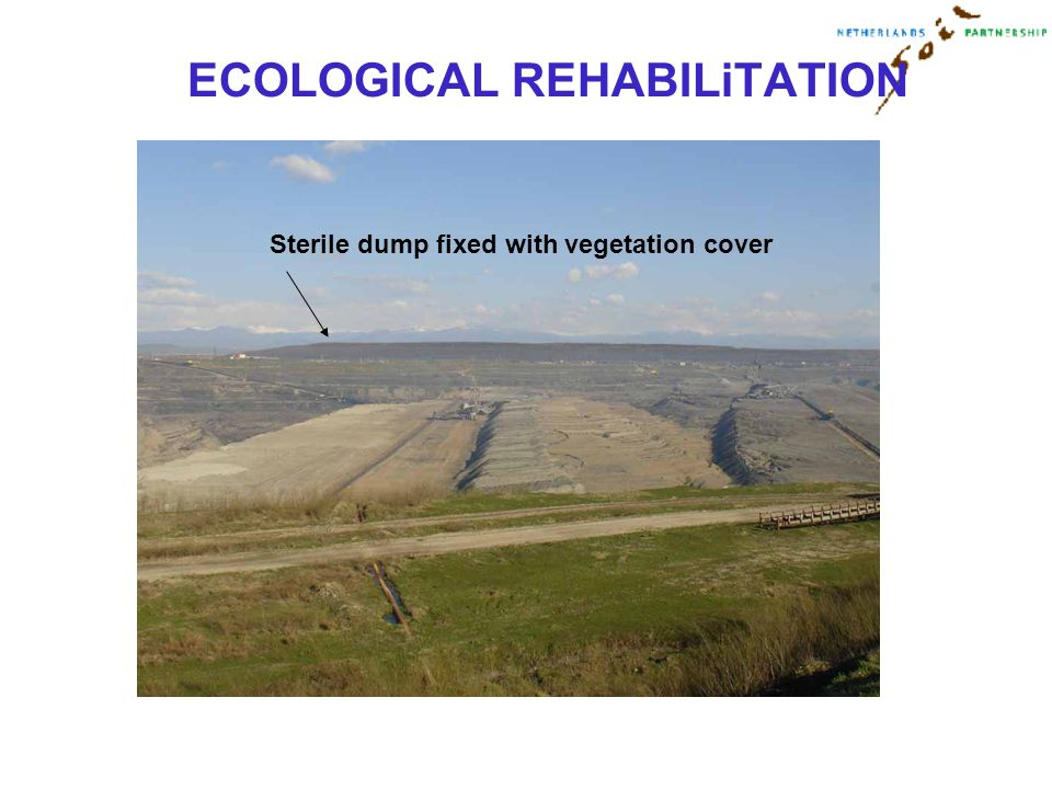 ECOLOGICAL REHABILiTATION Sterile dump fixed with vegetation cover