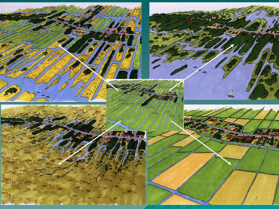 Bodemdaling remmen + - Watersystemen WB21-proof / klimaatbestendig - Watersystemen voldoen aan de KRW-doelen - Minder versnippering waterbeheer - Behoud en versterking agrarisch cultuurlandschap - Realisatie natuuropgaven (EHS, Natte As) - Duurzaam perspectief voor de landbouw - Reductie CO 2 uitstoot / versterking CO 2 opslag Opgaven Waarheen met het Veen voor het Westelijk veenweidegebied