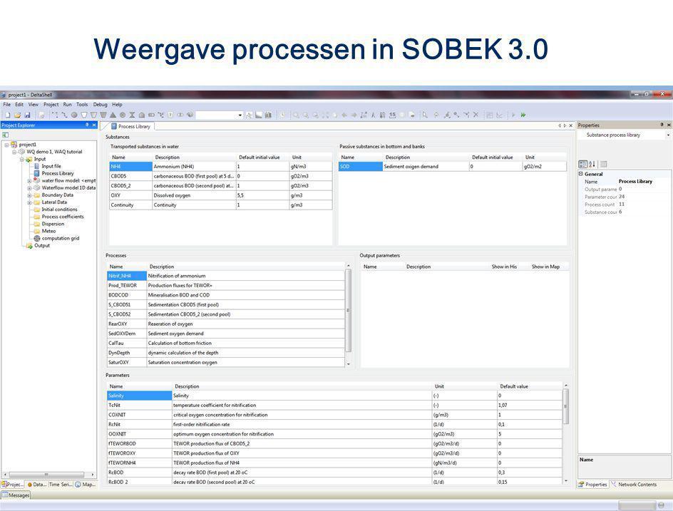 Weergave processen in SOBEK 3.0