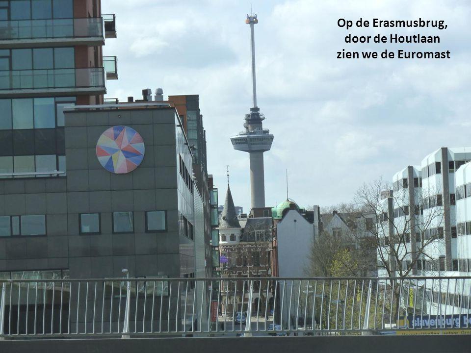 Noordereiland, Maastoren en Wilhelminatoren