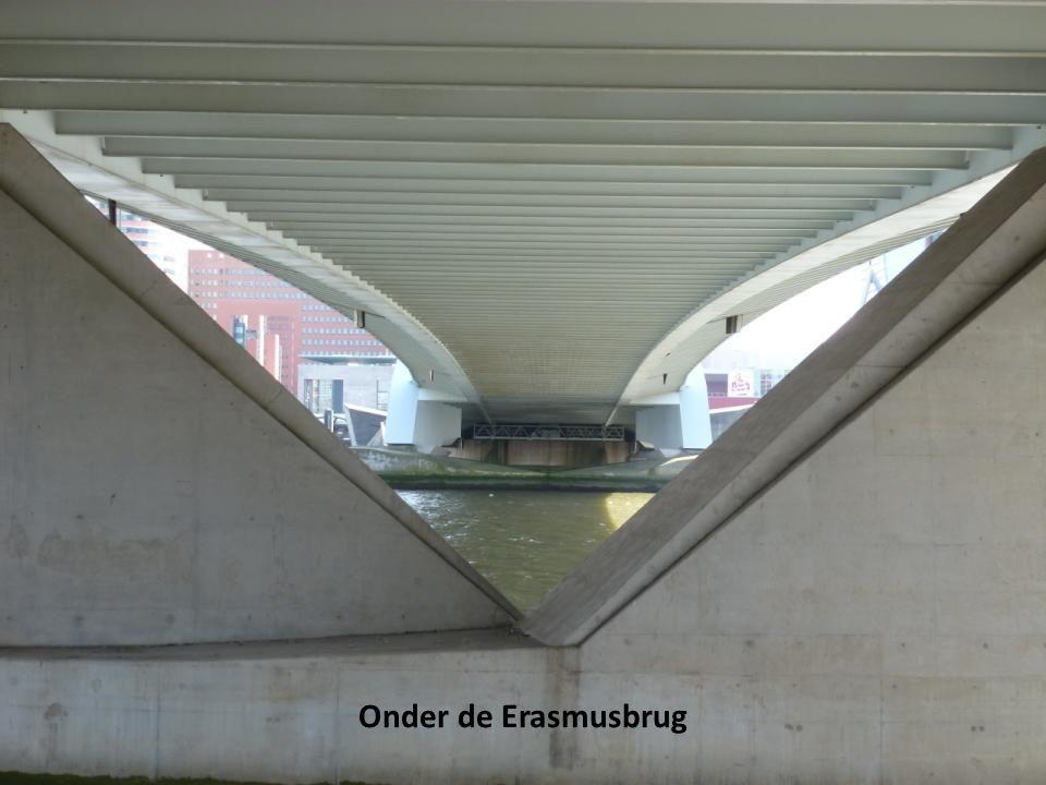Onder de Erasmusbrug