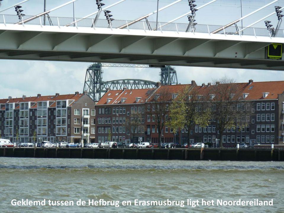 Geklemd tussen de Hefbrug en Erasmusbrug ligt het Noordereiland