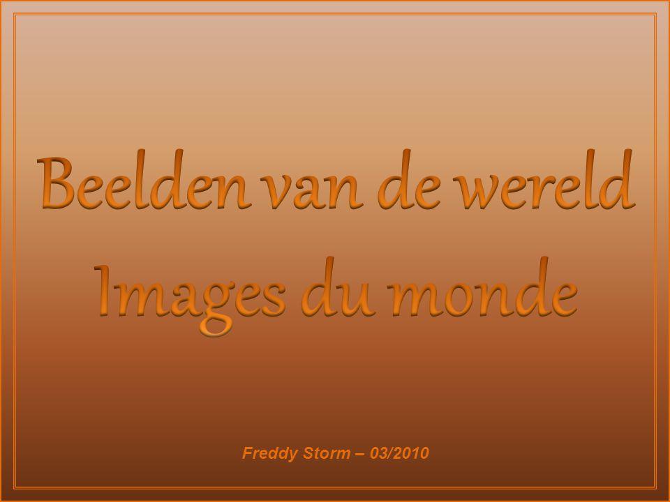 Freddy Storm – 03/2010
